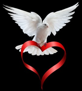 dove_with_heart